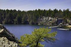 伟大的户外-树、湖和山 图库摄影