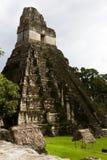 伟大的捷豹汽车寺庙,蒂卡尔,危地马拉 免版税库存照片