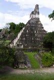 伟大的捷豹汽车寺庙,蒂卡尔,危地马拉 库存照片