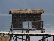 伟大的普雷斯帕湖的,马其顿鸟房子 库存照片