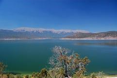 伟大的普雷斯帕湖,马其顿 库存照片