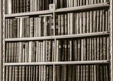 伟大的最大的图书馆在老修道院里 免版税库存照片