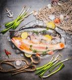 伟大的未加工的鳟鱼鱼品种在玻璃盘的与在具体背景的冰块与捕鱼网和调味料,顶视图 免版税库存图片