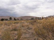 伟大的沙丘国家公园Landcape照片  免版税库存照片