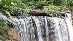 伟大的瀑布在公园 影视素材