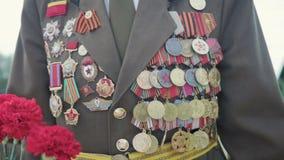 伟大的爱国战争和第二次世界大战的退伍军人在制服与许多徽章和顺序来与红色花 关闭 股票视频