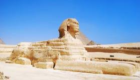 伟大的狮身人面象在吉萨棉,埃及 库存照片