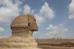 伟大的狮身人面象在吉萨棉 免版税库存照片