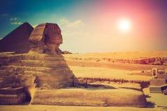 伟大的狮身人面象的充分的外形与金字塔的在背景中在吉萨棉 库存照片