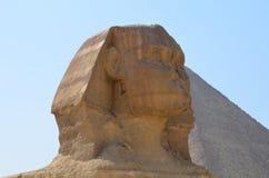 伟大的狮身人面象的美好的外形 免版税库存图片