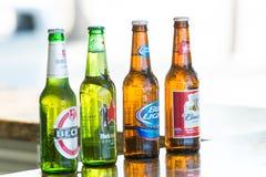 伟大的马镫岩礁,巴哈马- 2016年1月08日:在玻璃瓶的啤酒在酒吧柜台 酒精,恶习 茶点,饮料, beve 免版税库存照片