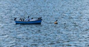 伟大的鸬鹚鸟的小组在一条小船的在Draycote浇灌湖,英国 库存照片