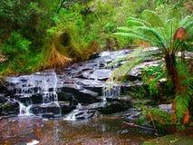 伟大的Otway国家公园瀑布 库存图片