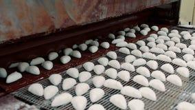 传动机用巧克力糖 糖果工厂 影视素材
