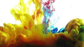 传播在水背景纹理的抽象五颜六色的油漆颜色 股票视频