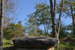 传教者的岩石亚当ondi Ahman戴维斯县密苏里 免版税库存照片