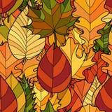 传染媒介乱画秋叶无缝的样式 图库摄影