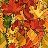 传染媒介乱画秋叶无缝的样式 免版税图库摄影