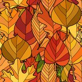 传染媒介乱画秋叶无缝的样式 库存图片