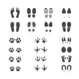传染媒介例证套人不同的脚和爪子轨道、野生和家畜和鸟 皇族释放例证