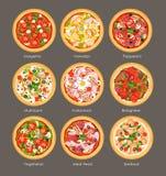 传染媒介例证套另外与成份的薄饼顶视图 意大利鲜美和明亮的颜色薄饼,素食主义者 向量例证