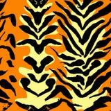 传染媒介例证老虎印刷品无缝的样式 橙色和黄色手拉的背景 库存例证