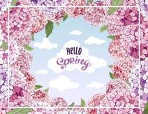 传染媒介八仙花属花 开花婚礼3月8日,情人节,母亲节,销售,季节性事件 花卉夏天 向量例证