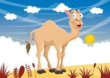 传染媒介动画片骆驼Iluustration  图库摄影