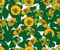传染媒介圣徒Patricks天无缝的样式 三叶草,三叶草, 免版税图库摄影