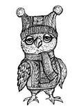 传染媒介在一个被编织的帽子的图象猫头鹰 库存照片