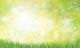 传染媒介夏天, bokeh,自然背景 免版税库存图片