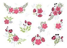 传染媒介套手拉的百花香 花和叶子在典雅的安排 库存图片