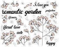 传染媒介套花卉分支 与逗人喜爱的桃红色花的乱画元素 浪漫贺卡或邀请背景的设计 向量例证