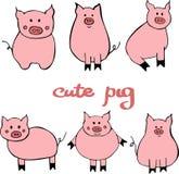 传染媒介套逗人喜爱的动画片猪 与新年的标志的例证2019年 向量例证