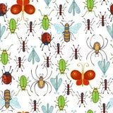 传染媒介无缝的昆虫样式 库存照片
