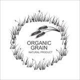 传染媒介标志或标签用麦子 免版税图库摄影