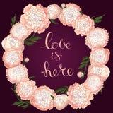 传染媒介牡丹 浅粉红色的花圆的框架  在伯根地背景的花花圈 花设计的模板,纺织品 皇族释放例证