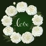 传染媒介牡丹 白花圆的框架  在深绿背景的花花圈 花设计的,纺织品设计模板 库存例证