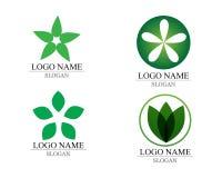 传染媒介留下绿色自然商标和标志 免版税库存照片