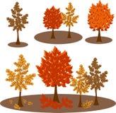 传染媒介秋天树剪贴美术 库存照片