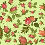传染媒介纺织品或背景的玫瑰样式 库存图片