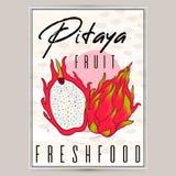 传染媒介被称呼的新pitaya海报标签 自然产品,种田有机 热带dragonfruit 库存例证