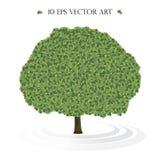 传染媒介被隔绝的绿色树 免版税库存图片