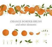 传染媒介边界刷子用桔子和橙色设计元素 皇族释放例证