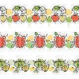 传染媒介集合,果子无缝的样式 装饰的边界 石榴,草莓,与叶子,装饰元素,污点,博士的苹果 免版税库存照片