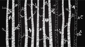 传染媒介黑板桦树或亚斯本树与秋叶和爱鸟 免版税库存图片