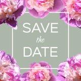 传染媒介与牡丹的贺卡 与花的婚礼或生日邀请 春天或夏天背景 免版税库存照片