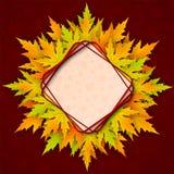 传染媒介与现实槭树叶子的秋天背景 图库摄影