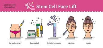 传染媒介与整容术干细胞改造的被说明的集合 皇族释放例证