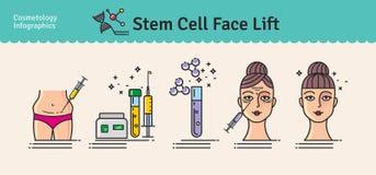 传染媒介与整容术干细胞改造的被说明的集合 向量例证